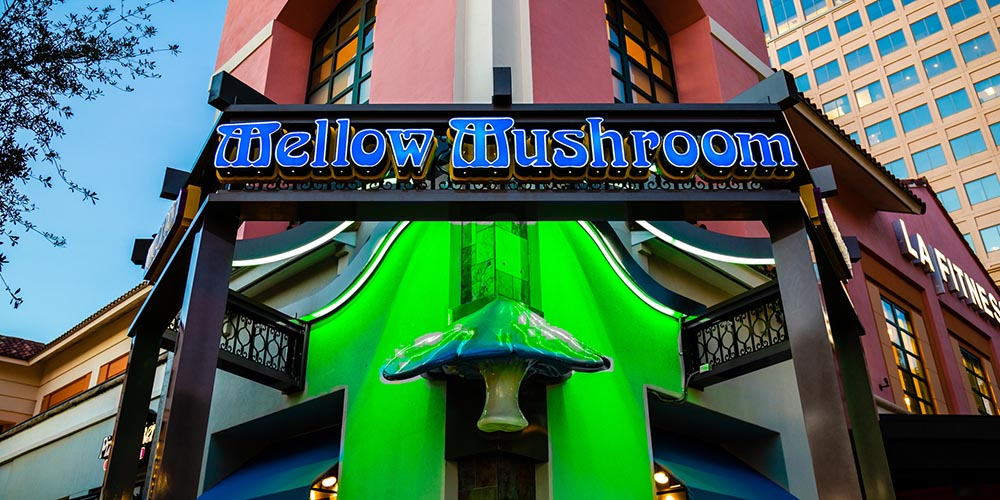 Corner trellis structure with wall sign and chasing DMX LED lights and scultped mushroom accent for Mellow Mushroom restaurant in West Palm Beach