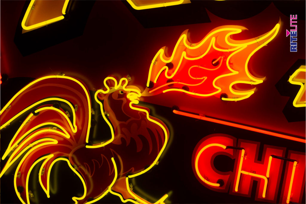 Neon rooster outline for Rocky's Hot Chicken Shack